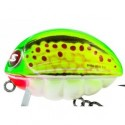 BG5,5-GB Wobbler Salmo BASS BUG