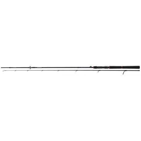Spinning rod Daiwa Tournament SW AGS