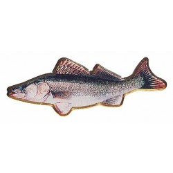Fish-pin Balzer Pike-Perch