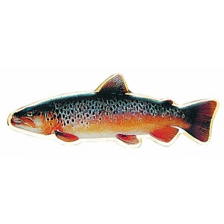 Rinnamärk Balzer Brown Trout
