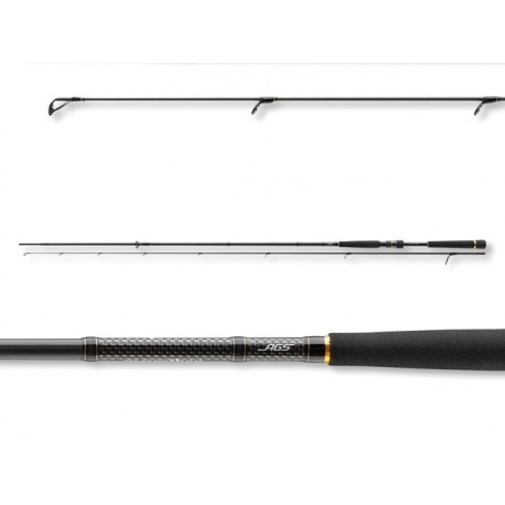 Spinning rod Daiwa Morethan Expert AGS