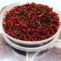MAT001 Bloodworm
